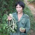 """Tin tức - """"Người rừng"""" Hồ Văn Lang muốn có vợ"""