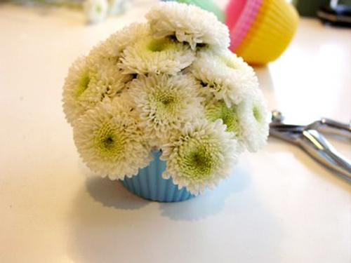 la mat kieu cam hoa hinh banh cupcake - 5