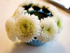 la mat kieu cam hoa hinh banh cupcake - 4