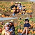 """Làng sao - Gia đình Trương Minh Cường """"đội nắng"""" thăm vườn bí đỏ"""
