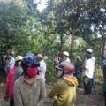 Tin tức - Thiếu nữ 19 tuổi chết bất thường trong rừng