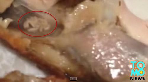tq: kinh hai gioi luc nhuc trong canh ga kfc - 3
