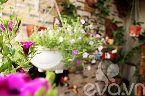 Thăm ban công hoa tình yêu ở quận Từ Liêm - 6