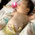 Làm mẹ - Bé sơ sinh sống sót sau 3 ngày kẹt dưới xác cha