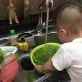 Làm mẹ - Chiêu khử thuốc trừ sâu trên rau quả cho con siêu hiệu quả