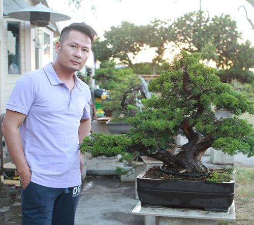 vuon bonsai tien ty o my cua bang kieu - 3