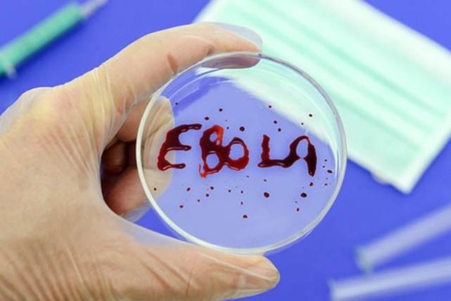khi xuat hien nguoi nhiem ebola, viet nam se lam gi? - 1