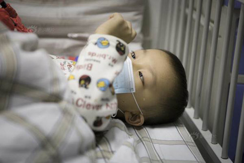 Cư dân mạng rơi nước mắt với giấc mơ của bé bị bạch cầu-1
