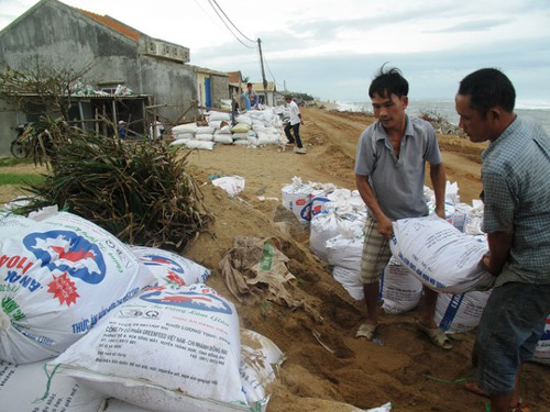 Phú Yên – Bình Định: Nhà sập, cây xác xơ sau bão số 4 - 3