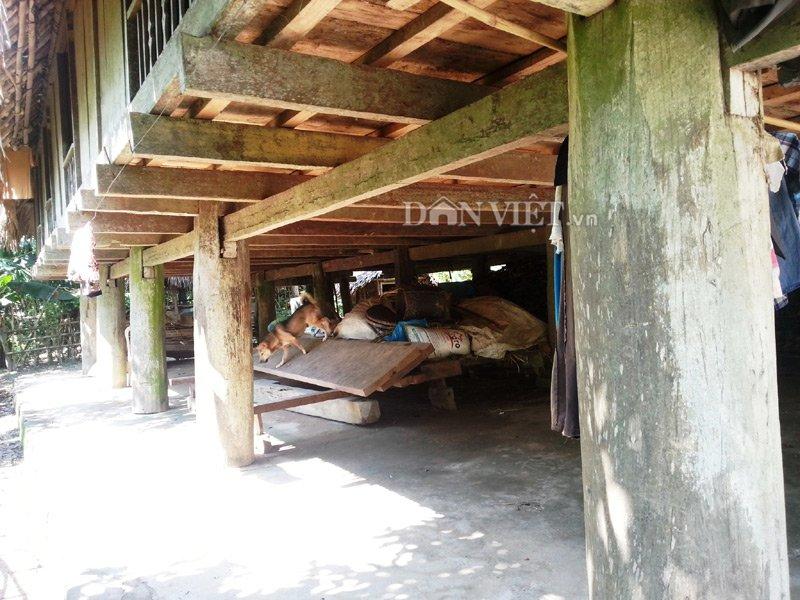 Chiêm ngưỡng ngôi nhà sàn cổ bằng gỗ quý hiếm ở xứ Thanh-2