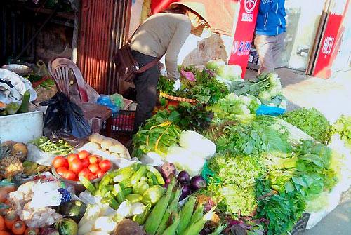 Nhiều mẫu rau xanh ở chợ tồn dư thuốc bảo vệ thực vật-1