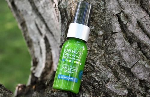 danh gia serum lam sach lo chan long andalou willow bark pure pore - 6