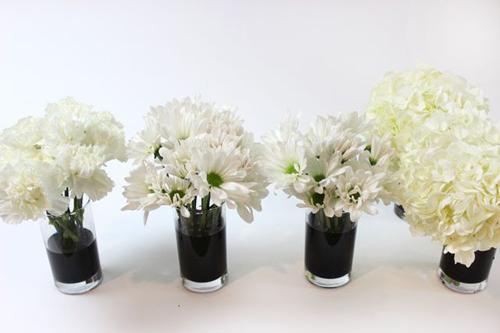 Bí quyết nhuộm màu cho hoa cúc trắng cực nhanh - 7