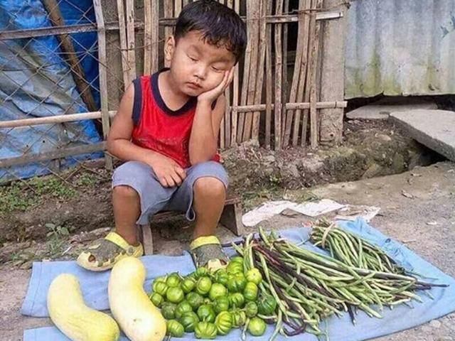 Cậu bé thiên thần ngủ gật bên sạp rau của mẹ, ai nhìn cũng thương