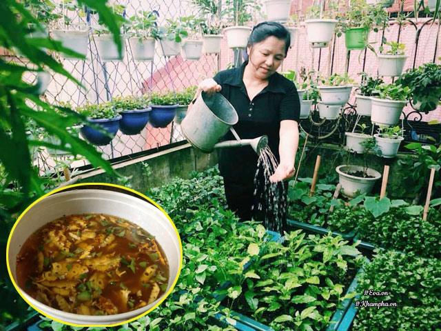 Cô giáo Hà Nội mách cách làm nước thần diệt sâu bọ, đuổi muỗi, lau nhà,... cực tốt