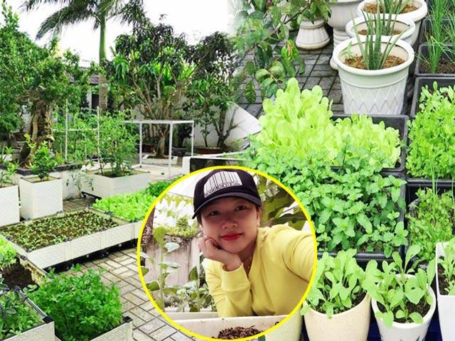 Vườn rau đáng ngưỡng mộ của mẹ Sóc Trăng từng trồng rau muống 3 tháng chưa được ăn