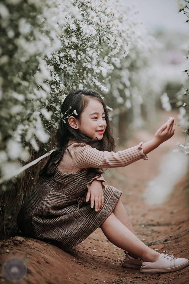 Bé gái ví như tiểu Chi Pu tạo dáng bên hoa cúc họa mi đốn ...