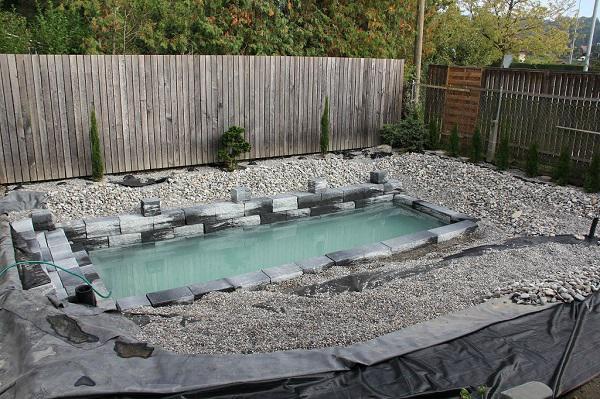 Tự xây bể bơi thiên nhiên tuyệt đẹp, ba bố con khiến hàng xóm amp;#34;phát ghenamp;#34; - 10