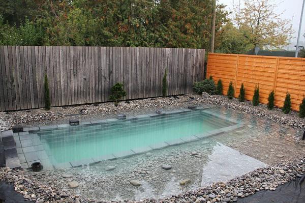 Tự xây bể bơi thiên nhiên tuyệt đẹp, ba bố con khiến hàng xóm amp;#34;phát ghenamp;#34; - 11