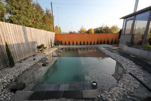 Tự xây bể bơi thiên nhiên tuyệt đẹp, ba bố con khiến hàng xóm amp;#34;phát ghenamp;#34; - 12