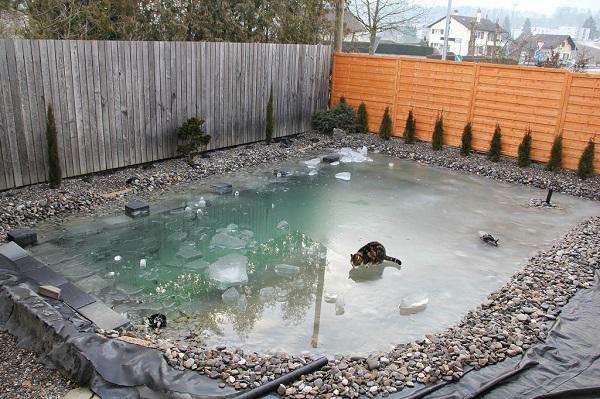 Tự xây bể bơi thiên nhiên tuyệt đẹp, ba bố con khiến hàng xóm amp;#34;phát ghenamp;#34; - 14