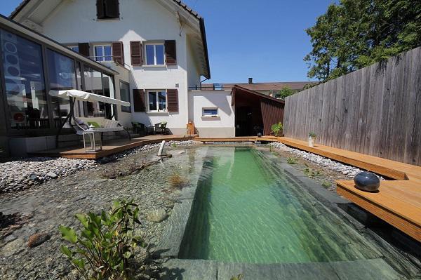 Tự xây bể bơi thiên nhiên tuyệt đẹp, ba bố con khiến hàng xóm amp;#34;phát ghenamp;#34; - 19