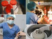 Xem tận mắt từng bước thực hiện thụ tinh nhân tạo tại Việt Nam, chỉ tốn 5-10 triệu đồng