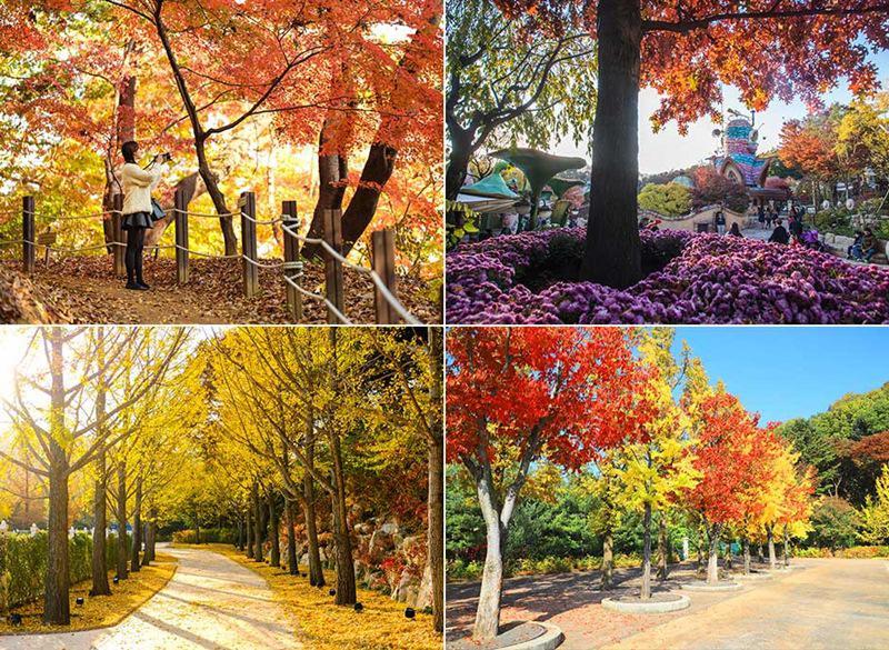 Những người thích đi bộ có thể đi qua đường mòn bí mật, cho phép du khách gần gũi hơn với những loài thực vật tuyệt đẹp.