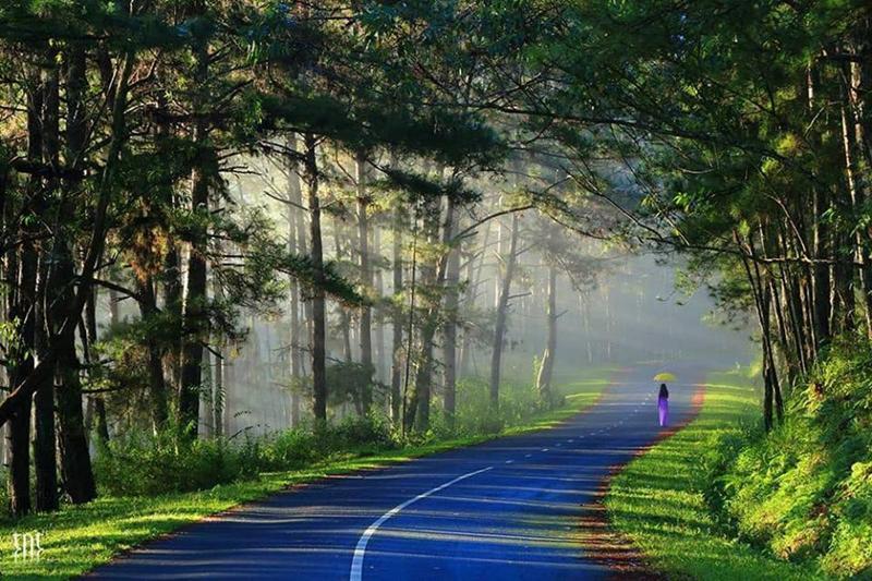 """Mới đây, hàng loạt trang fanpage trên mạng xã hội cùng thích thú chia sẻ một bộ ảnh Đà Lạt khiến dân mạng """"há hốc"""" vì vẻ đẹp như mơ của """"thành phố sương mù""""."""