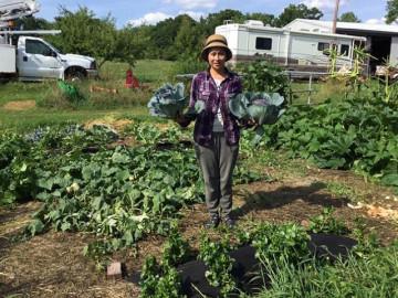 Khu vườn xanh mướt mát, ăn mãi không hết rau sạch của nàng dâu Việt ở Mỹ