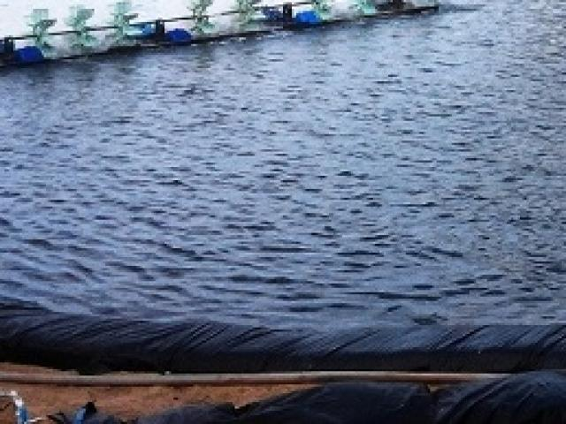 Bé trai 19 tháng tuổi tử vong thương tâm khi ngã xuống hồ nước do bất cẩn của bố mẹ