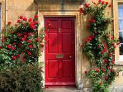 Con dâu sơn cửa chính màu đỏ tươi, mẹ chồng tức tốc bắt xe từ quê lên cấm tiệt vì...