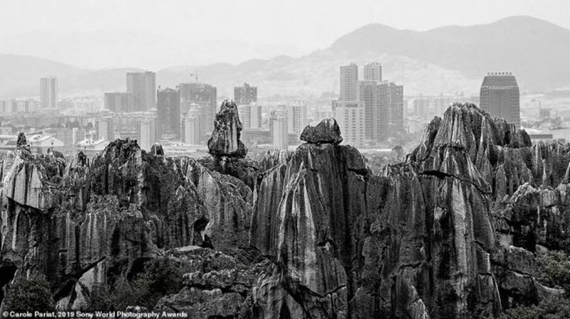 Khu rừng đá có niên đại hàng nghìn năm tương phản với các tòa nhà hiện đại tại một thành phố ở miền nam Trung Quốc. Ảnh: Carole Pariat
