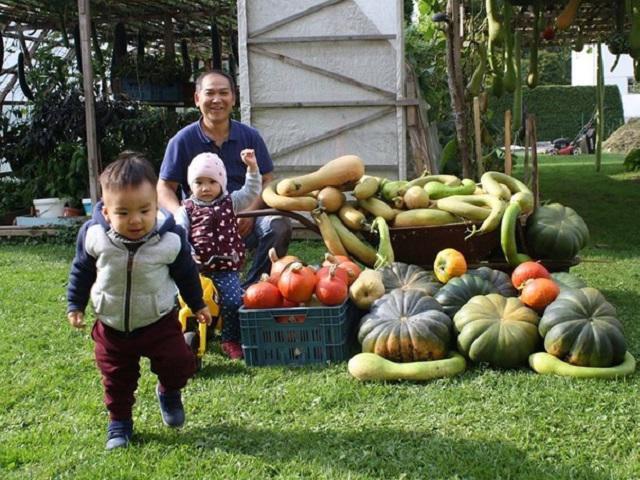 Khu vườn 70m2 trồng đủ loại rau, mùa nào cũng có bầu, bí trĩu trịt của ông bố Việt kiều
