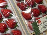 Những loại quả đắt tiền màu đỏ mà nhà giàu thường mua dịp Tết cho may mắn